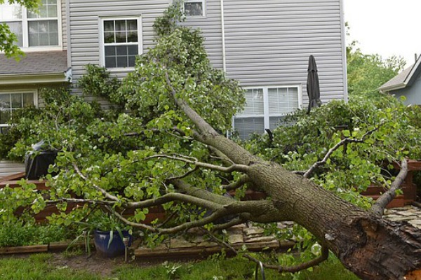 Storm Damage Repair Experts Hurricane Amp Flood Emergency